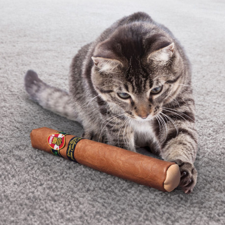 KONG Better Buzz Cigar pour chat - Diposnible chez Animalerie.Store