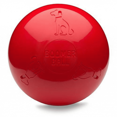 Boomer Ball pour chien